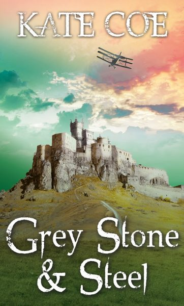 Grey Stone & Steel Cover